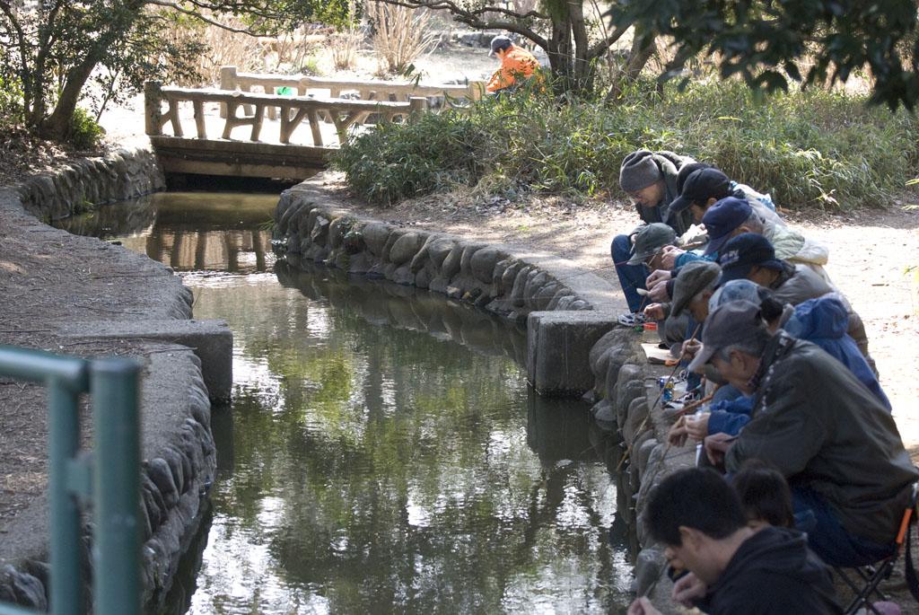 画像参照:野鳥の庭 in Nerima Tokyo