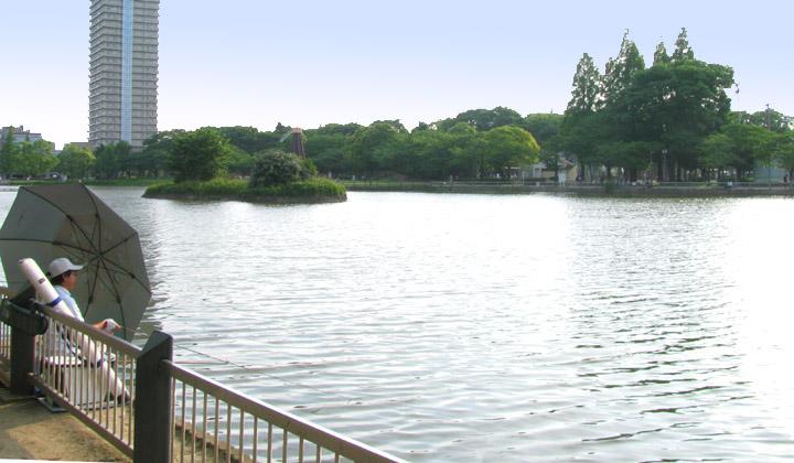 画像参照:浮間公園の池